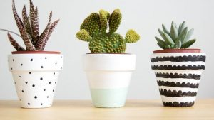 header_image_header_image_Article_Main-DIY_Creative_Ways_to_Decorate_Flower_Pots-1